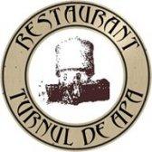 Logo Turnul de Apă