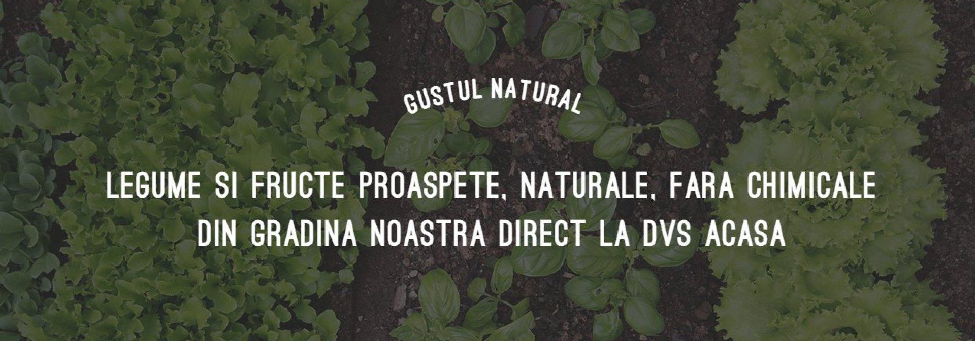 Gustul Natural, Voinești, Iași